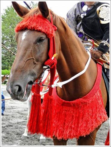 競馬ぼやきイメージ018